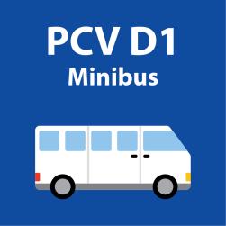 PCV D1